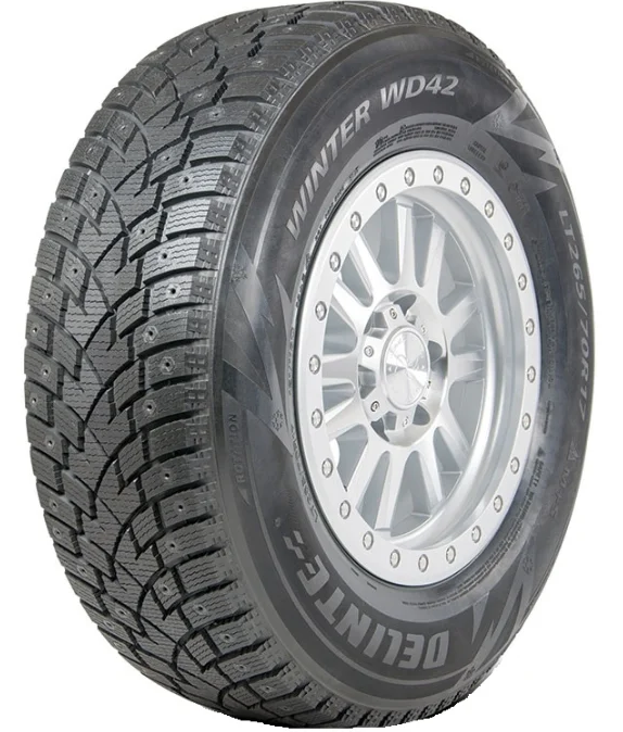Delinte Winter WD42